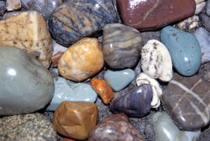 When rocks are wet their colors come out vividly. Water also has the same effect on naked people in the shower.